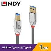 【LINDY 林帝】USB 3.0 TYPE-A公 對 TYPE-B公 傳輸線(1M)