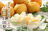【果之蔬-全省免運】日本日田梨5-7入原箱X1箱(5kg±10%/箱)