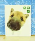 【震撼精品百貨】新大頭狗_The Dog...