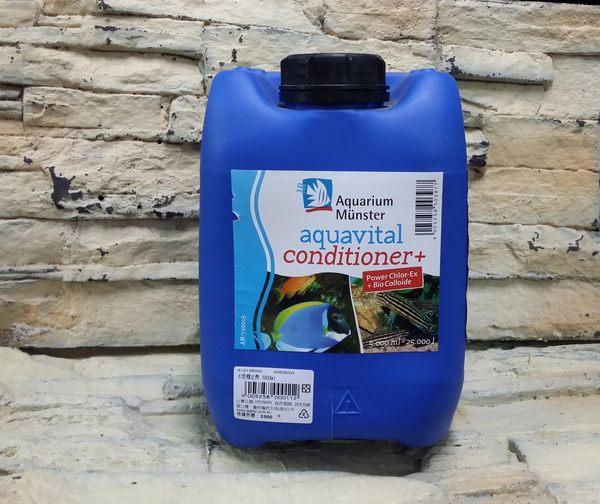 【西高地水族坊】德國MUNSTER默斯特 AuqaVital Conditioner水質穩定劑5L