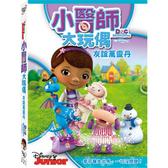 小醫師大玩偶:友誼萬靈丹-DVD 普通版