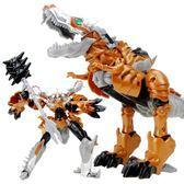 變形玩具金剛5 電影4 鋼索霸王龍恐龍手辦模型機器人男孩兒童禮物