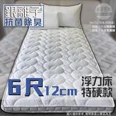 【嘉新名床】銀離子 ◆ 浮力床《特硬款 / 12公分 / 雙人加大6尺》