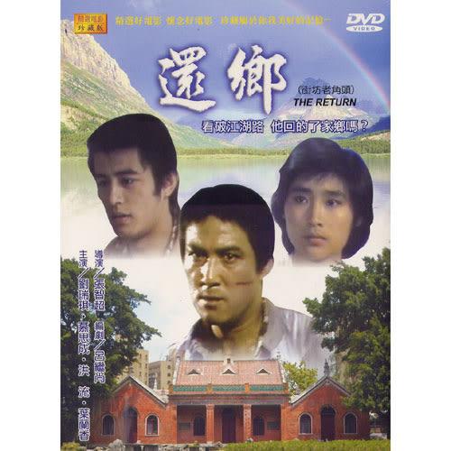 還鄉DVD 洪流/葉蘭香
