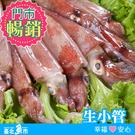 【台北魚市】 船凍生小管 250g以上