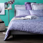 HOLA 瑪安天絲床包兩用被組 雙人