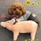 法斗睡覺伴侶四腳豬豬柴犬柯基泰迪英斗比熊寵物狗毛絨玩具可愛   LannaS