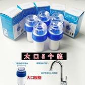 濾水器拉普斐水龍頭篩檢程式家用廚房農村自來水濾水器小型淨水器PP 棉濾芯玫瑰