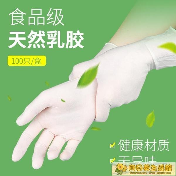一次性手套 乳膠手套高彈食品級PVC加厚耐用橡膠美容紋繡餐飲洗碗家務 向日葵