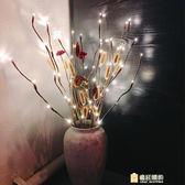 彩燈 led彩燈樹枝燈婚慶裝飾燈20頭溫馨家居裝飾插花枝條燈 一件免運