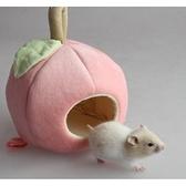【培菓幸福寵物專營店】DYY》寵物窩倉鼠天竺鼠保暖可愛水果棉睡窩含睡墊