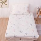 【滿額送Hello Kitty購物袋】熱帶樂園冰絲涼蓆單人床墊-生活工場