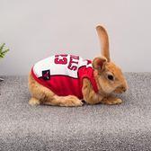 小兔子衣服夏季薄款用品寵物兔衣服服飾垂耳兔兔侏儒兔裙子超小號 樂活生活館
