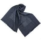 EMPORIO ARMANI 條紋圍巾(...