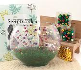 會睡覺的寵物花--利百加-中-療癒系-懶人盆栽-居家辦公桌上創意擺飾禮品