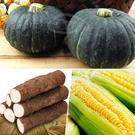 鮮採家 小資家庭蔬果箱(人蔘山藥+栗子南瓜+黃玉米)