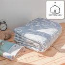涼被 精梳棉純棉涼被 奧德曼灰/美國棉授權品牌[鴻宇]台灣製2013