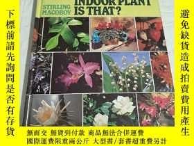 二手書博民逛書店WHAT罕見INDOOR PLANT IS THAT?(詳情看圖