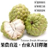 【果農直送-大顆】 台東大目釋迦x1盒(6顆/4.5台斤±10%)