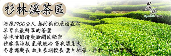 【名池茶業】杉林溪手採高山茶/烏龍茶(150g)●韻清味甘.飲後回味無窮!●