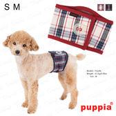 美式時尚《Puppia》風尚禮貌帶 S/M號 禮貌至上 公狗外出必備 吉娃娃/貴賓/馬爾濟斯