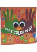 色彩遊戲書:WHAT COLOR IS IT?