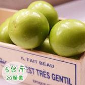 饗果樂.燕巢牛奶蜜棗約5台斤(20粒裝)﹍愛食網