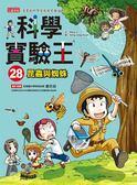 (二手書)科學實驗王(28):昆蟲與蜘蛛