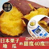 【果之蔬-全省免運】日本金時栗子地瓜全X1箱(10台斤±10%含箱重/箱)