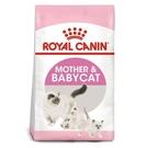 ◆MIX米克斯◆法國皇家BC34  離乳貓  2kg
