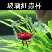 紅蟲餵食杯 紅蟲杯燈科魚 赤蟲 蟲杯 玻璃廣口玻璃紅蟲杯魚缸餵食器餵魚器投餵圈
