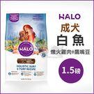 [寵樂子]《HALO嘿囉》成犬燉食白魚(燉火雞肉+鷹嘴豆)1.5磅 / 狗飼料