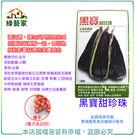 【綠藝家】G26.黑寶甜珍珠糯玉米種子2...