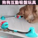 超強吸盤狗狗磨牙玩具 耐咬球 拉扯 互動...