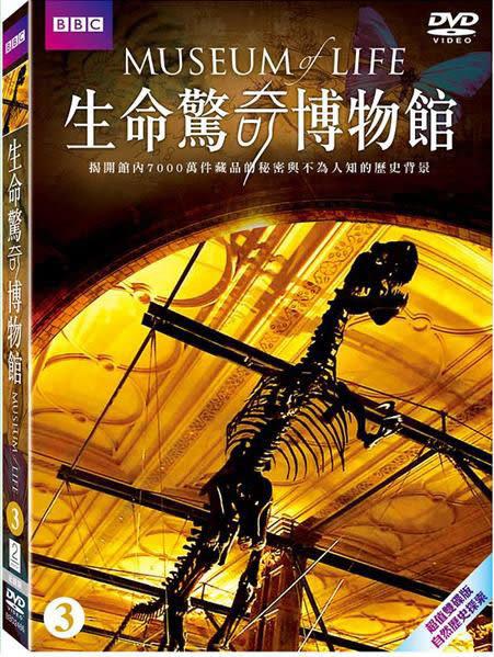 生命驚奇博物館3 雙碟版 DVD  (購潮8)
