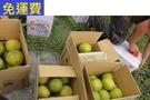 (已售完)10月 西施蜜柚 17-18顆約30斤 家裡就永遠有水果(已售完)