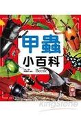 甲蟲小百科