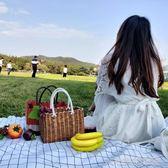 野餐籃 手工塑料編織筐時尚購物籃野餐水果收納框小寵物藍洗澡手提菜籃子 大宅女韓國館YJT