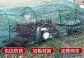 蝦籠漁網魚網自動龍蝦網捕魚工具折疊抓魚籠黃鱔籠捕蝦河蝦泥鰍網 快速出貨