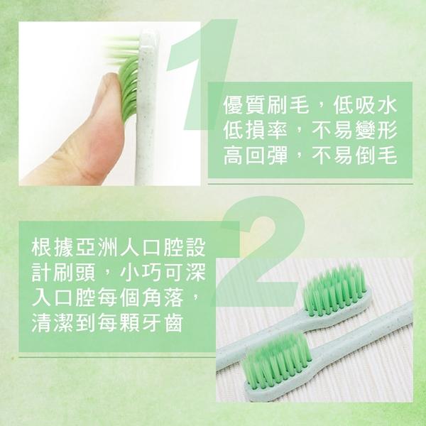 卡麗施 綠茶銀離子 牙刷2入 軟毛牙刷 牙齒美白 小刷頭