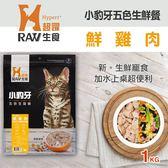 【毛麻吉寵物舖】小豹牙五色生鮮餐 鮮雞肉口味 1公斤(200克*5替代)