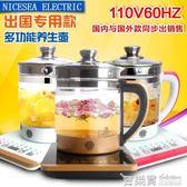 110V伏養生壺出口美國加拿日本多功能熱水壺全自動加厚玻璃中藥壺