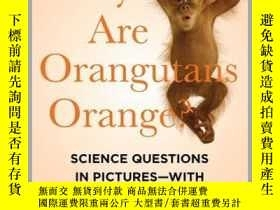 二手書博民逛書店Why罕見Are Orangutans Orange?Y410016 Mick O Hare Now i...