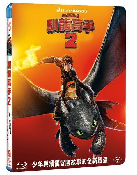 馴龍高手2 (BD)How to Train Your Dragon2 (BD)