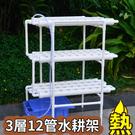 三層12管水耕架 108槽 水耕種菜 無...