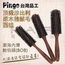 Pingo台灣品工頂級沙比利原木豬鬃毛圓梳 吹捲 蓬鬆感 另售刮梳 尖尾梳【HAiR美髮網】
