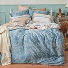 床包被套組 / 雙人加大【可莉安】含兩件枕套  100%天絲  戀家小舖台灣製AAU312
