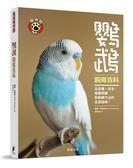 鸚鵡飼育百科:從品種、安全、健康照護到訓練方法的全面指南!