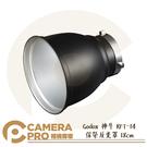 ◎相機專家◎ Godox 神牛 RFT-14 保榮反光罩 18cm 60度 光束角 不含蜂巢 可搭 BD-04 公司貨