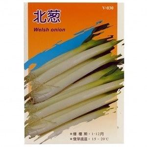 蔬菜種子-北蔥